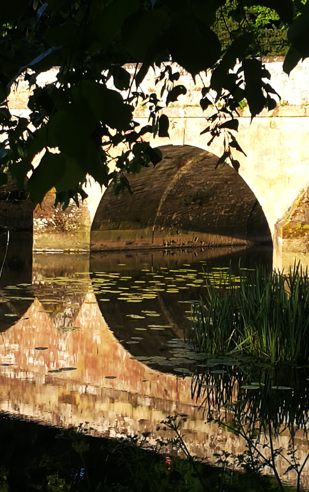 Blandford bridge in early morning sun