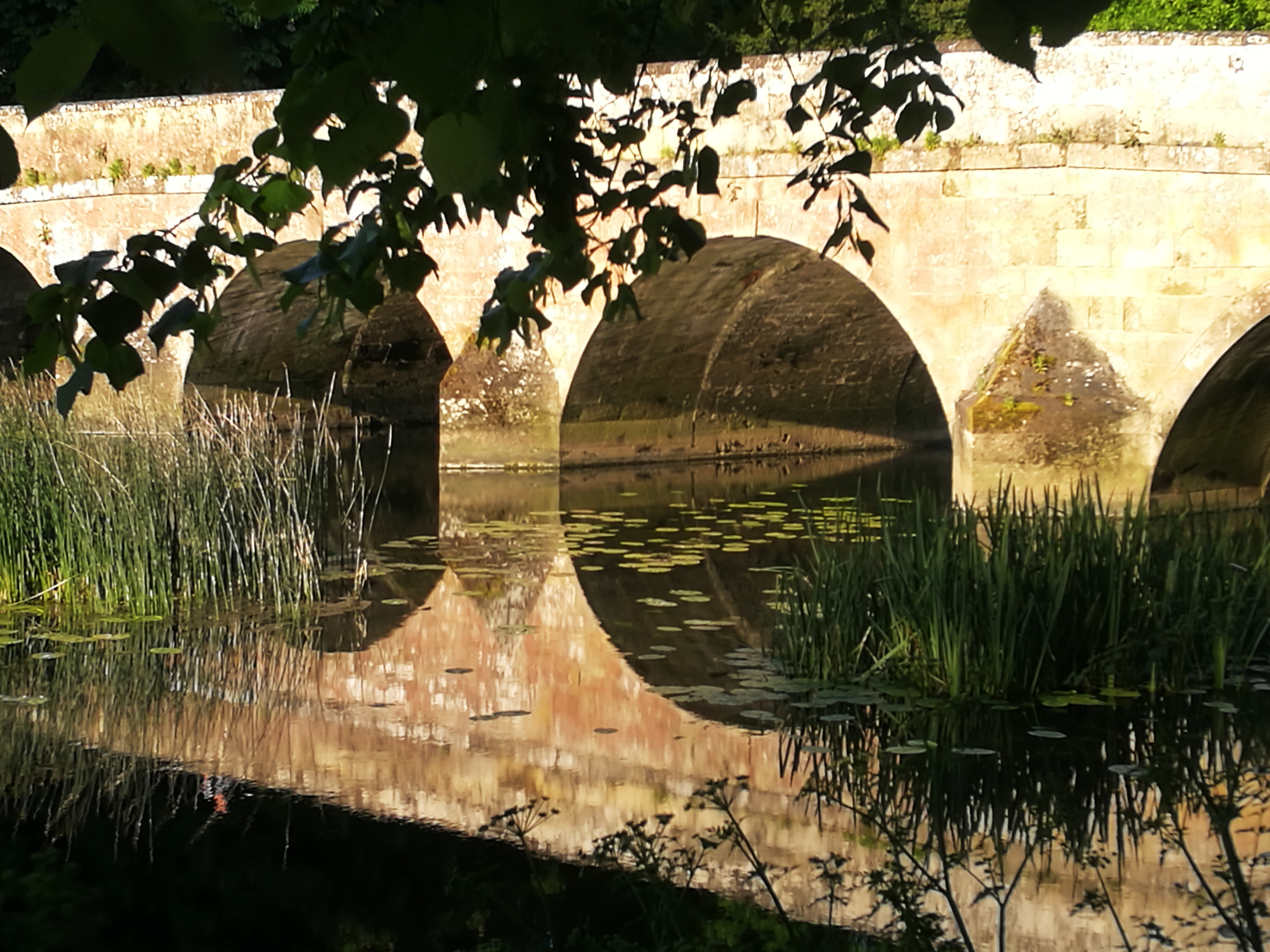 Blandford bridge in the early morning sun