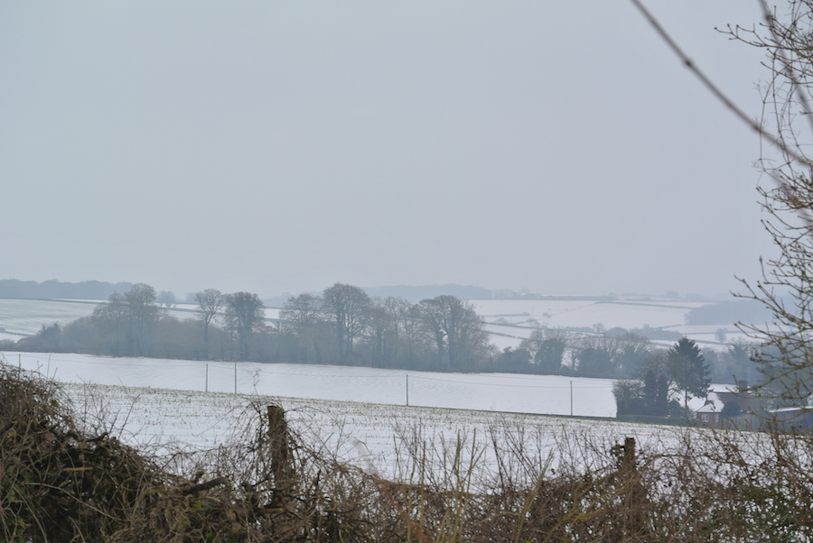Winter view at North Lodge Dorset